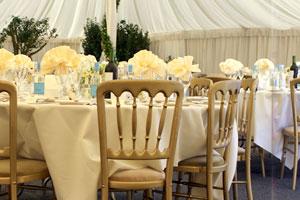 Wedding & event planner